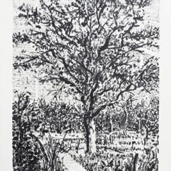 Stone tree I (Arbre),…